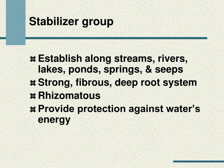 Stabilizer group