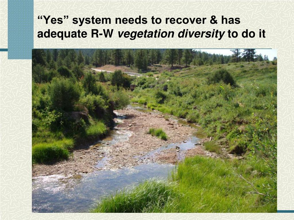 """""""Yes"""" system needs to recover & has adequate R-W"""