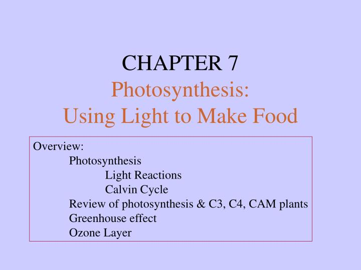 Chapter 7 photosynthesis using light to make food