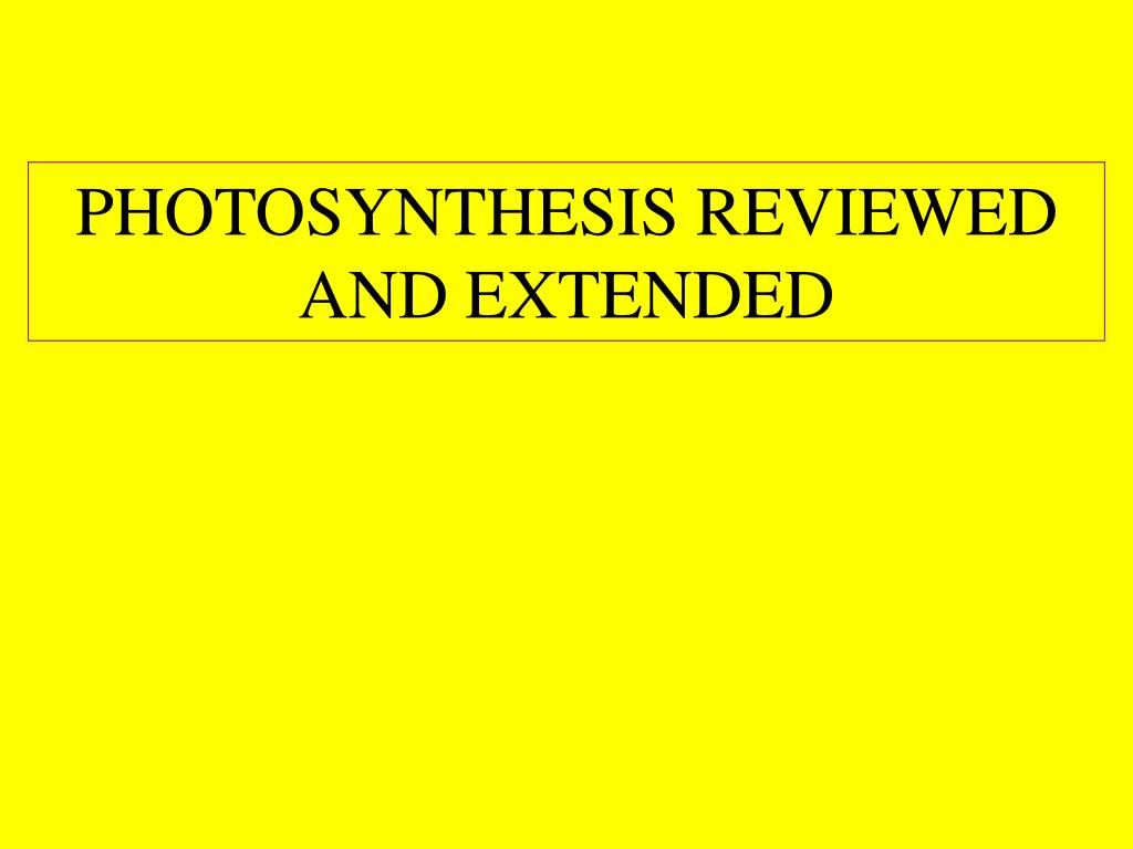 PHOTOSYNTHESIS REVIEWED AND EXTENDED