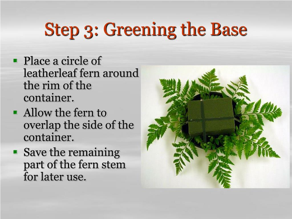 Step 3: Greening the Base