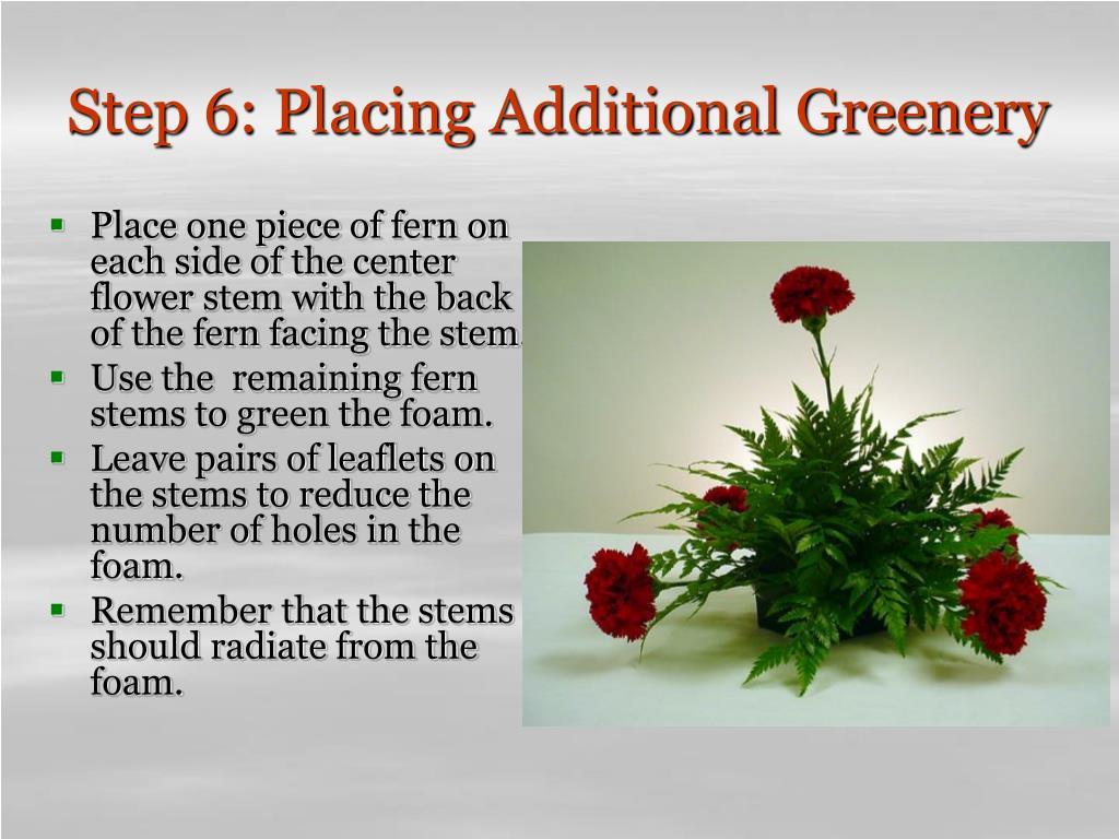 Step 6: Placing Additional Greenery