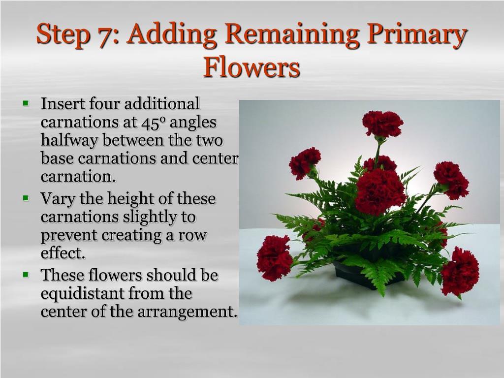 Step 7: Adding Remaining Primary Flowers