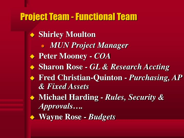 Project team functional team