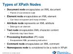 types of xpath nodes