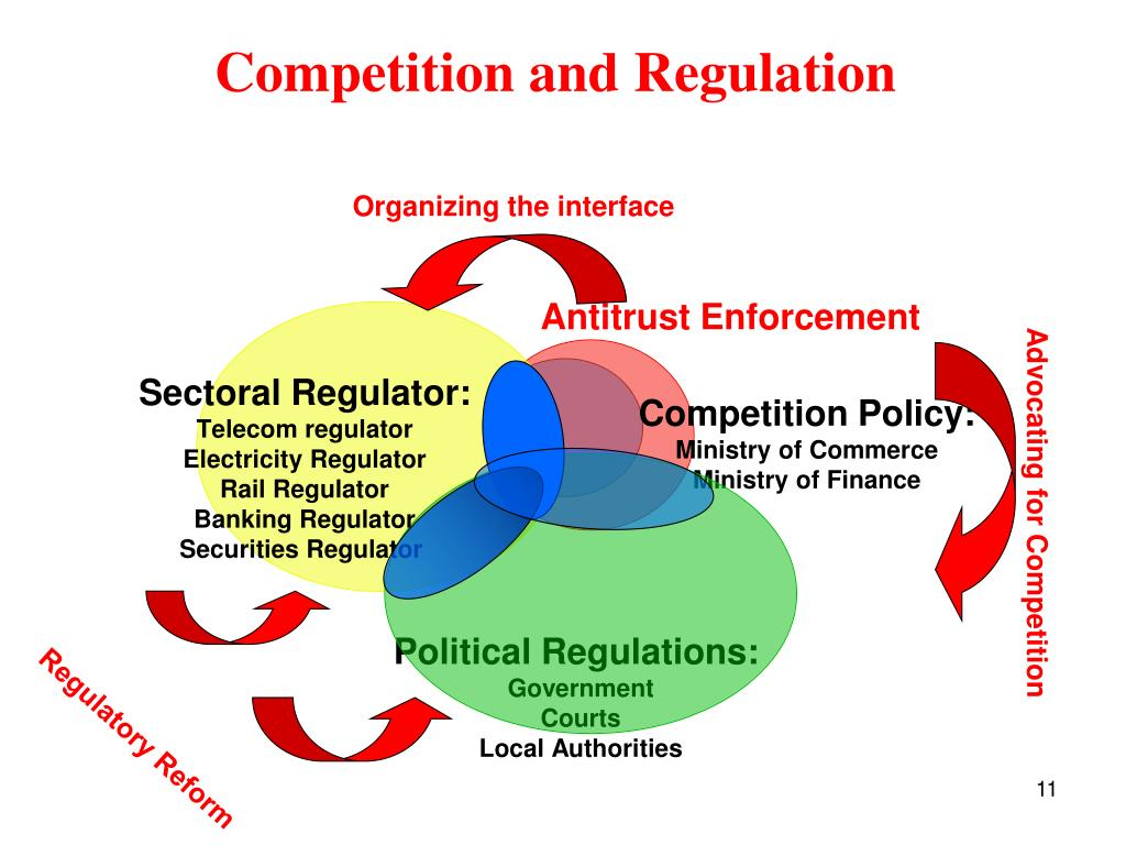 Competition and Regulation