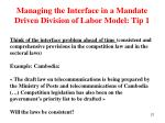 managing the interface in a mandate driven division of labor model tip 1