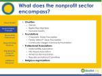 what does the nonprofit sector encompass