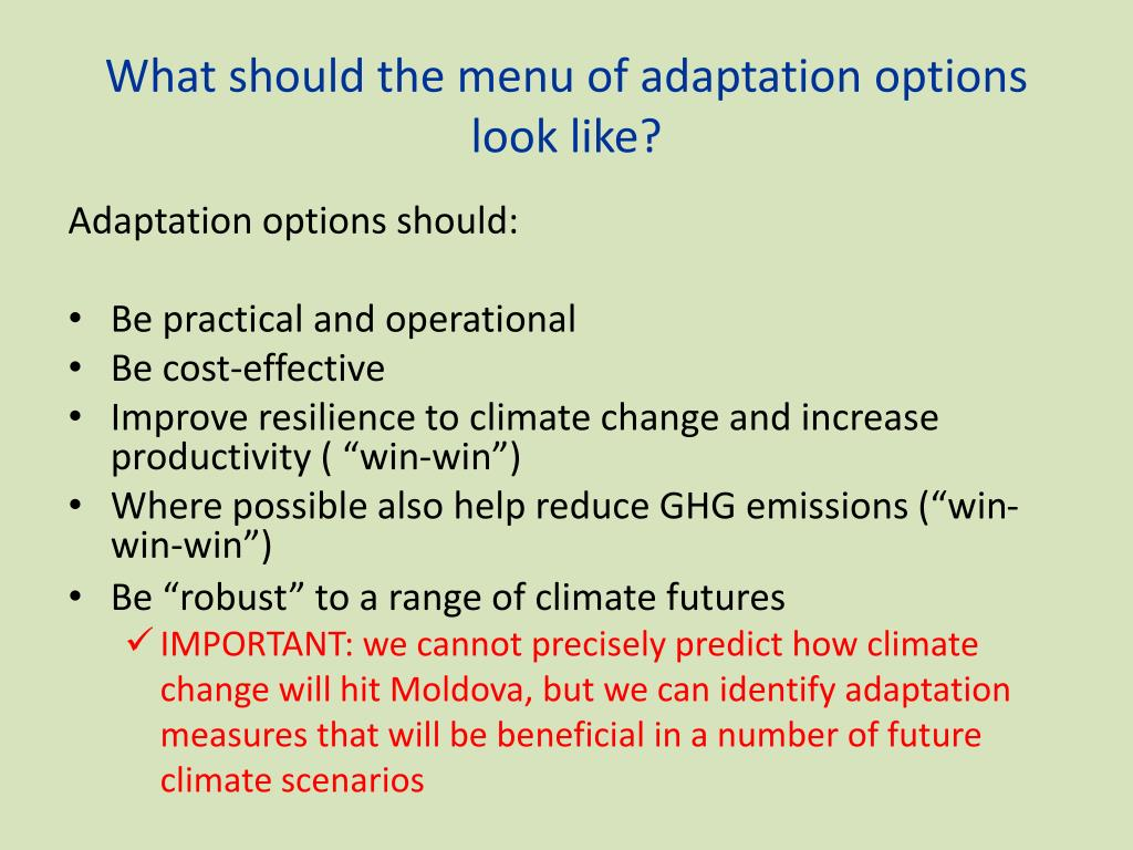 What should the menu of adaptation options look like?