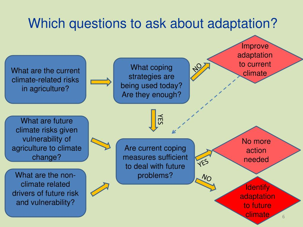 Which questions to ask about adaptation?