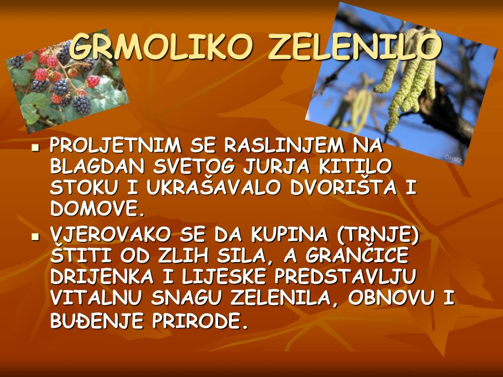GRMOLIKO ZELENILO