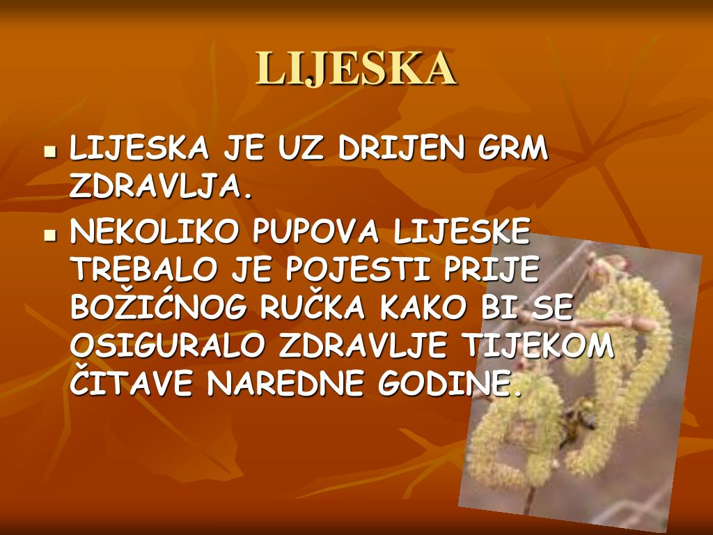 LIJESKA