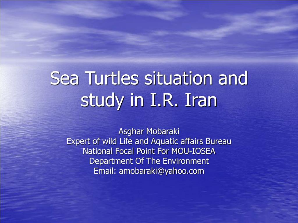 sea turtles situation and study in i r iran l.