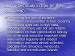 sea turtles study in iran in the past years