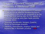 the most important nesting sites of hawksbills in the persian gulf