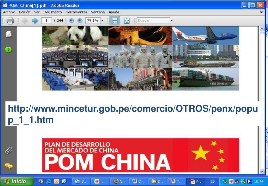 http://www.mincetur.gob.pe/comercio/OTROS/penx/popup_1_1.htm