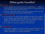 other garlic benefits