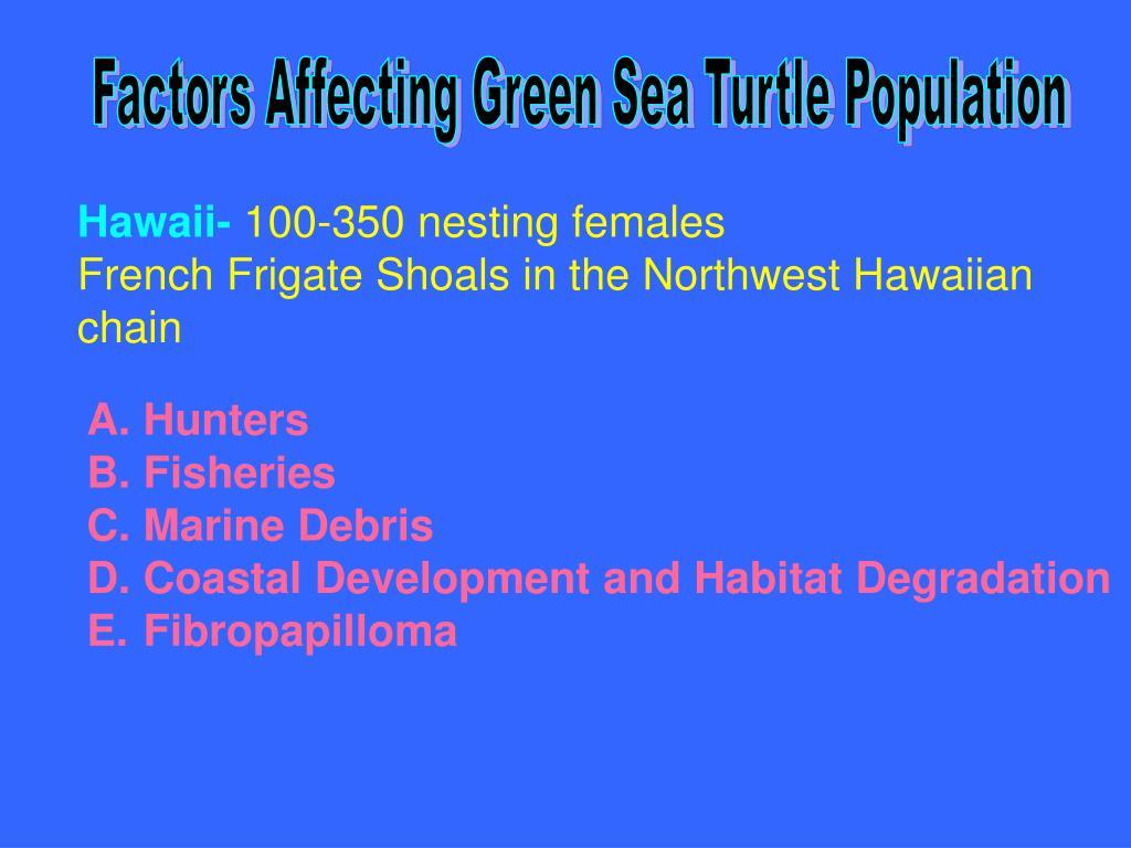 Factors Affecting Green Sea Turtle Population