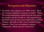 navigation and migration55