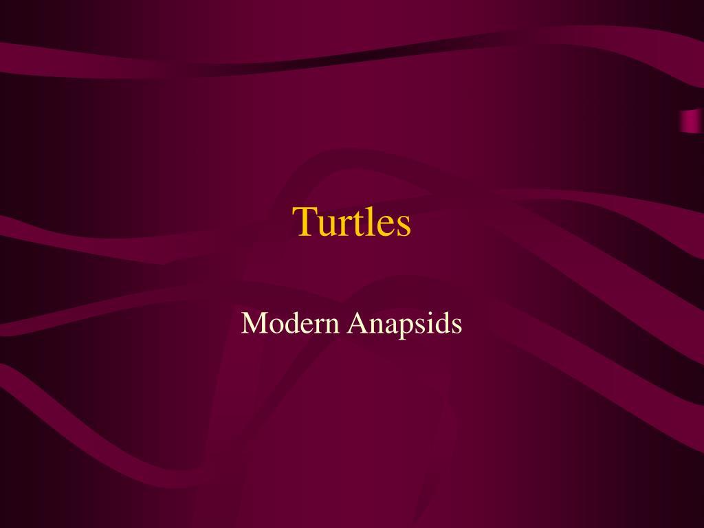 turtles l.