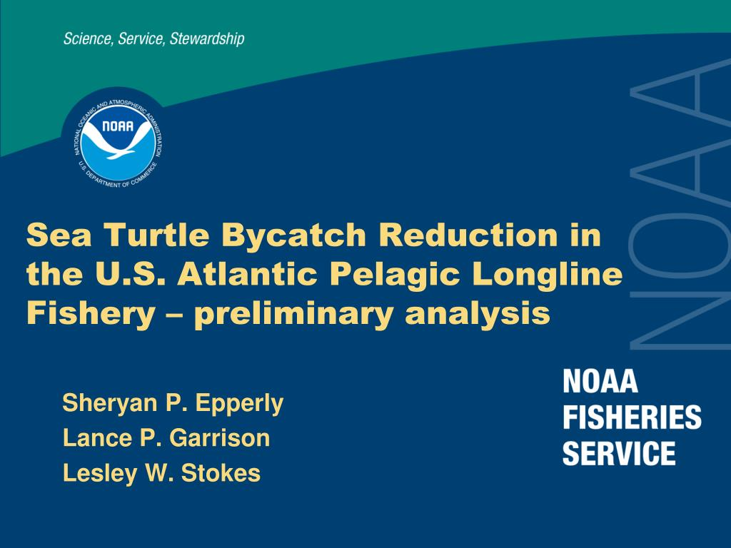 sea turtle bycatch reduction in the u s atlantic pelagic longline fishery preliminary analysis l.