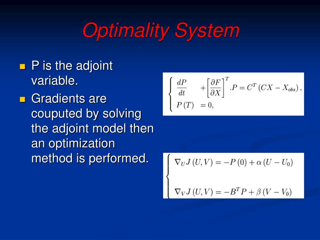 Optimality System