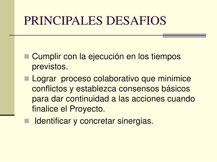 PRINCIPALES DESAFIOS