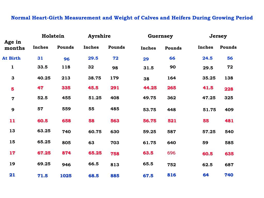 Normal Heart-Girth Measurement and Weight of Calves and Heifers During Growing Period