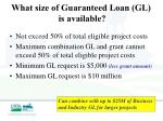 what size of guaranteed loan gl is available