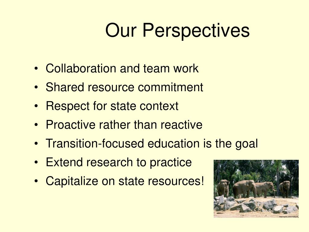 Our Perspectives