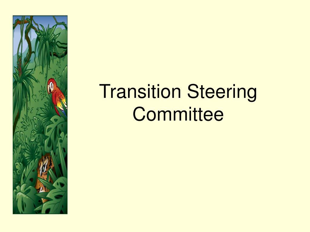 Transition Steering