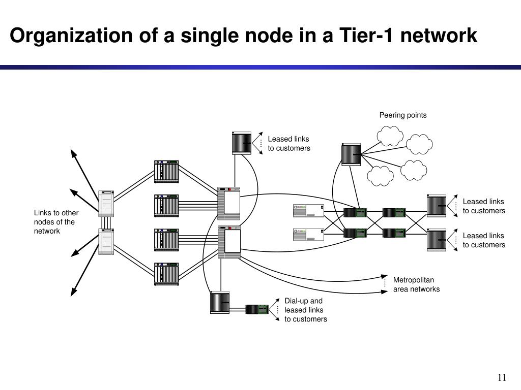 Organization of a single node in a Tier-1 network