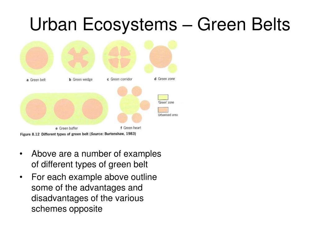 Urban Ecosystems – Green Belts