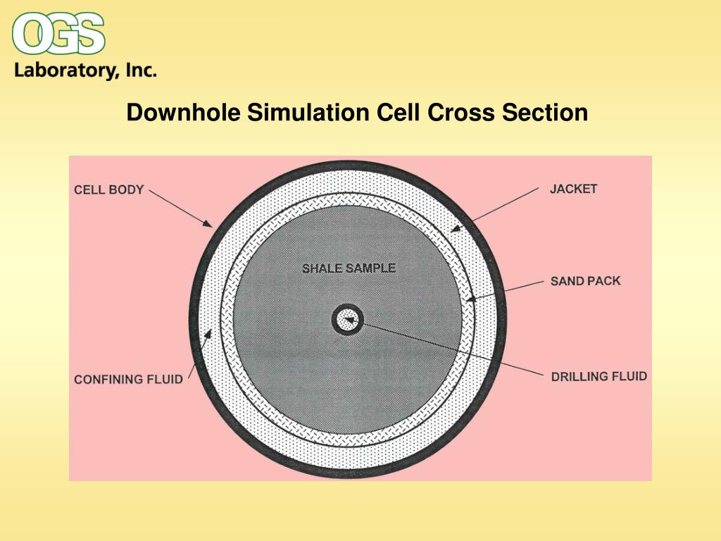 Downhole Simulation Cell Cross Section