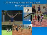 lift in a way muscles are used in movement