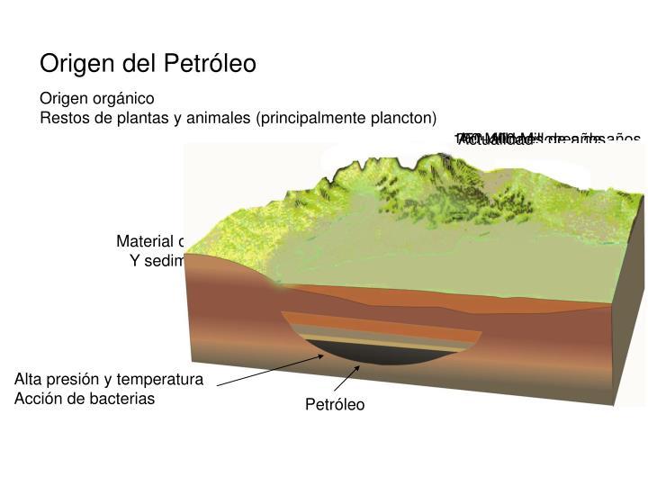Origen del Petróleo