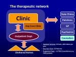 the therapeutic network