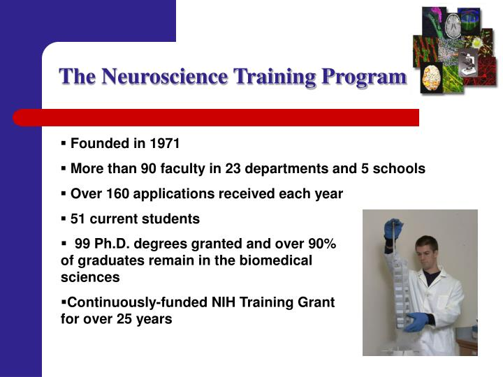 The Neuroscience Training Program