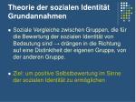 theorie der sozialen identit t grundannahmen