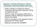saginaw county substance abuse treatment and prevention services29