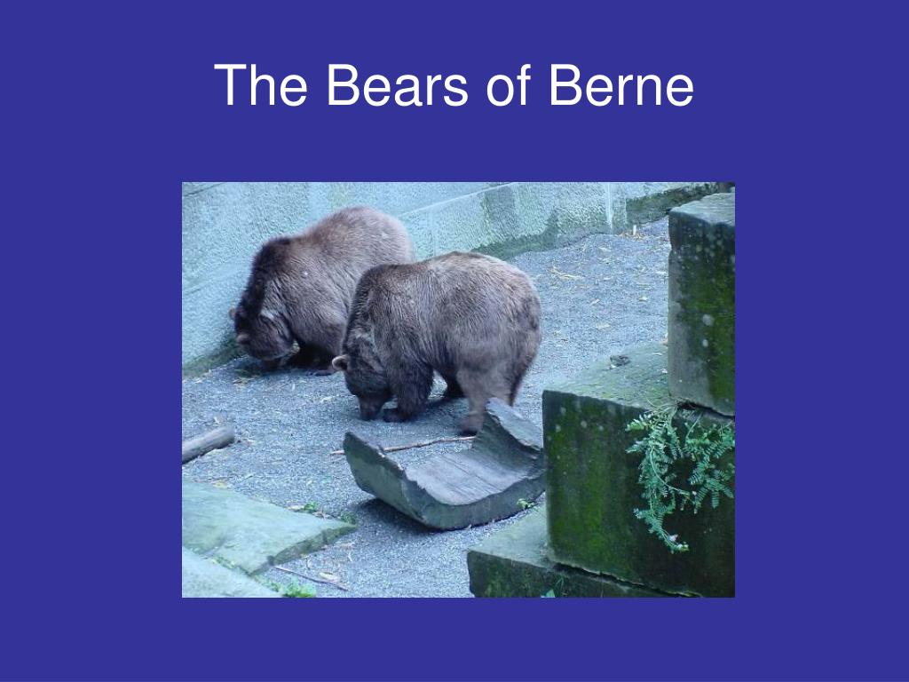 The Bears of Berne