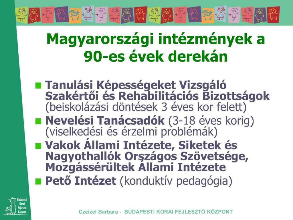 Magyarországi intézmények a 90-es évek derekán