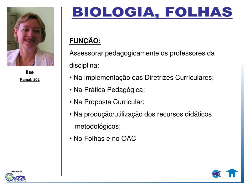 BIOLOGIA, FOLHAS