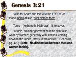 genesis 3 21