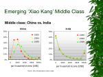 emerging xiao kang middle class