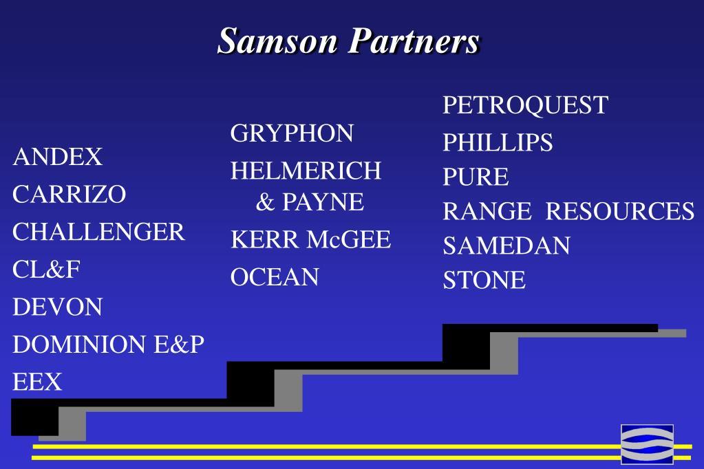 Samson Partners