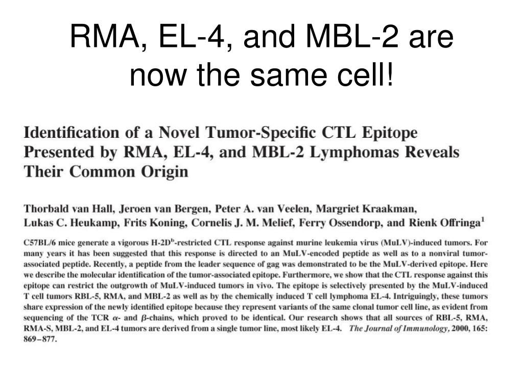 RMA, EL-4, and MBL-2 are now the same cell!