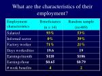 what are the characteristics of their employment