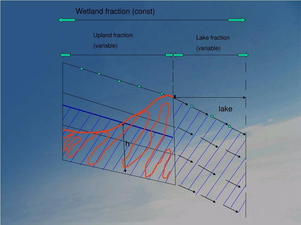 Wetland fraction (const)