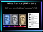 white balance wb button10